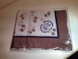 LA MARTINA - kl. Foulard 100% Seide - Handmade